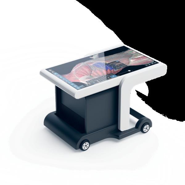 Интерактивный анатомический стол «Пирогов» промдизайн